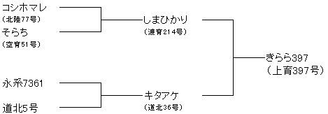 きらら397系譜