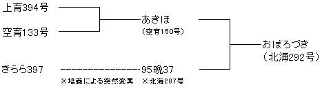 おぼろづき系譜