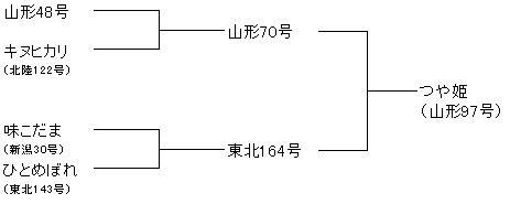 山形米 つや姫系譜