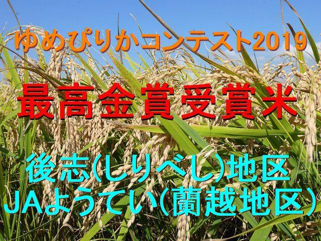 ゆめぴりかコンテスト2019最高金賞ゆめぴりか(蘭越産特別栽培米)